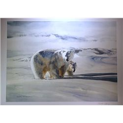 Charles Jeffrey Lithograph  Polar Bear