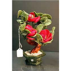 Siberian Jade  Bonsai Flower Tree 