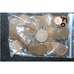 Indian Head Penny, Various Dates & Conditions, Lot of 50