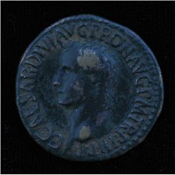 Caligula (37-41 AD) - AE-As  Rome 37-38 AD. Obv: Caligula is bare headed l., C CAESAR DIVI AVG PRONA