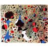 Image 1 : The Nightingale&#39;s Song - Miro - Limited Edition on Canvas