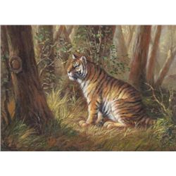 5 x 7 Oil on Board ~Tiger in Jungle~
