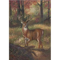 5 x 7 Oil on Board ~Deer in Woods~ Signed W. Coter
