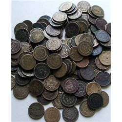Lot of 80 Indian Head Pennies- AG Circulated-