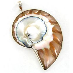 135twc Filled Nautilus Sterling Pendant (JEW-3438)