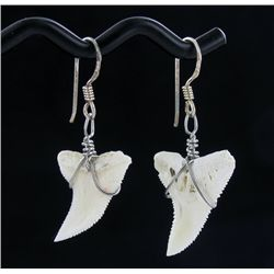 Sterling Shark Ivory Earrings (JEW-1958)