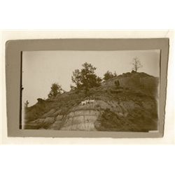 "L.A. Huffman, Wild Mountain Goats at Timberline, VCP (Vintage Contact Print), 6 1/2"" x 3 3/4"""