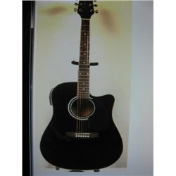 Takmine Jasmine Acoustic/Electric Guitar