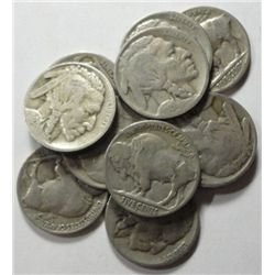 11  1926S Buffalo nickels good everywhere but 9 is a little blurry