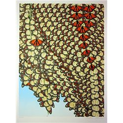 Cristine Avenue  Butterfly's II  Hand Signed Limited Ed. Serigraph