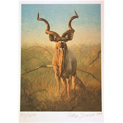 Peter Darro Limited Edition Lithograph