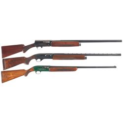 Three Semi-Automatic Shotguns