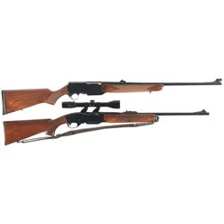 Two Semi-Automatic Sporting Rifles