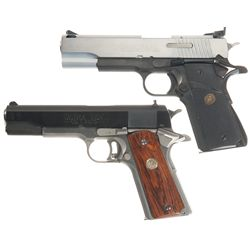 Two Semi-Automatic 10mm Pistols
