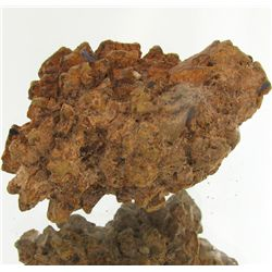 280ct Crystalized Coprolite Dinosaur Doo Cluster (MIN-001115)
