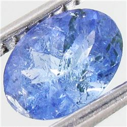 0.95ct Top Color Tanzanite Oval (GEM-38819)