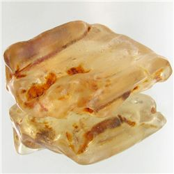 90ct Large Amber Chunk With Inclusions (MIN-001477)
