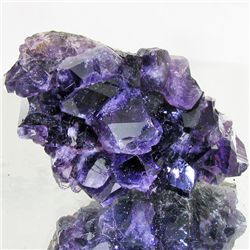365ct Deep Color Uruguay Amethyst Crystal Cluster (MIN-001200)