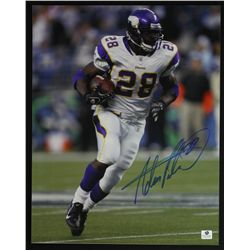 Adrian Peterson Signed Vikings 11x14 Photo (GA)