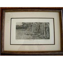 Whispering Woods Etching Signed and Numbered by Coleman