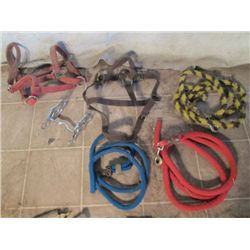 3 Lead Ropes, 2 Head Stalls And A Bit