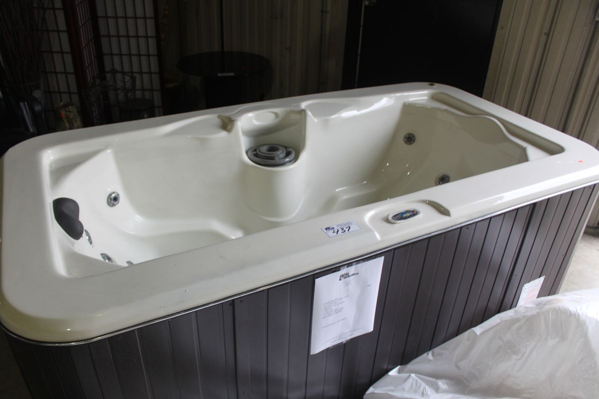 CAL SPA 2 PERSON HOT TUB WITH 18 STAINLESS STEEL