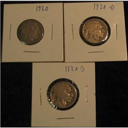 1530. 1920 P, D, & S Buffalo Nickels. AG-G. (3 pcs.).