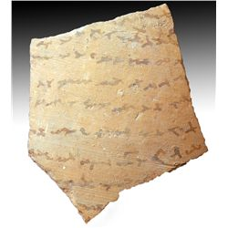 An Egyptian Coptic Inscribed Ostrica