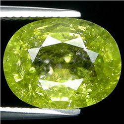 4.87ct  Oval Cut Blue Green Cuprian Tourmaline (GEM-35276)