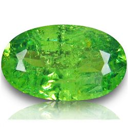 1.23ct Vivid Green Demantoid Garnet  (GEM-44086)