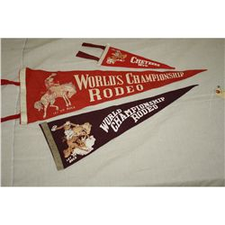Rodeo Pennants