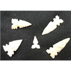 5 Small Serrated Bird Points