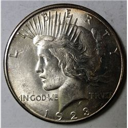 1923 S PEACE DOLLAR CHOICE/GEM BU NICE!