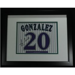 Luis Gonzalez Custom Framed Diamondbacks 12x15 Jersey Number Photo (PA LOA)