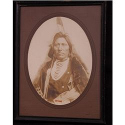 David F. Barry American (1854 - 1934) photograph of Chief Goose. …
