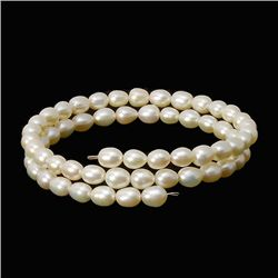 Saltwater Small White Pearl Bracelet  (JEW-260)