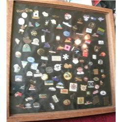 PIN COLLECTION IN SHADOW BOX  MAMMOTH  SEA WORLD LOTTERY AND MORE