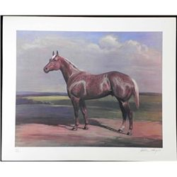 Helen Hayse Signed Art Print Brown Horse