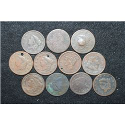 Large One Cent; Various Dates & Conditions; Lot of 10