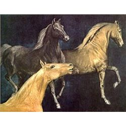 Mustangs by GH Rothe-Original Mezzotint