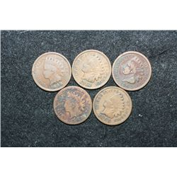 Indian Head One Cent; Various Dates & Conditions; Lot of 5