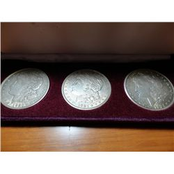 1921 PDS SET OF 3 MORGAN SILVER DOLLARS IN CASE ALL XF