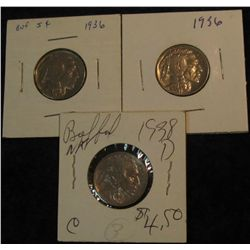 18. (2) 1936 P & 38 D Buffalo Nickels. EF-AU.