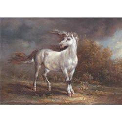 MWF1383T 5x7 Oil on Board Depiciting Wild Mustang
