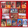 Lot of 16 Vintage Native American Indian Postcards