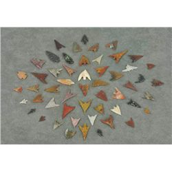 - Columbia River Arrowheads (53 items/1 tray)