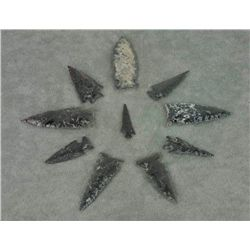 - Prehistoric Arrowheads and Spear Points (26 items/3 trays)