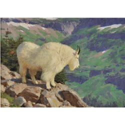 Tucker Smith - Mountain Goat