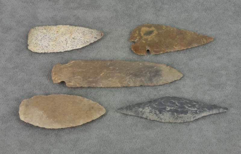 Caveman Artefacts : Related keywords suggestions for prehistoric artifacts