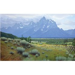 Tim Tyler - Teton Valley